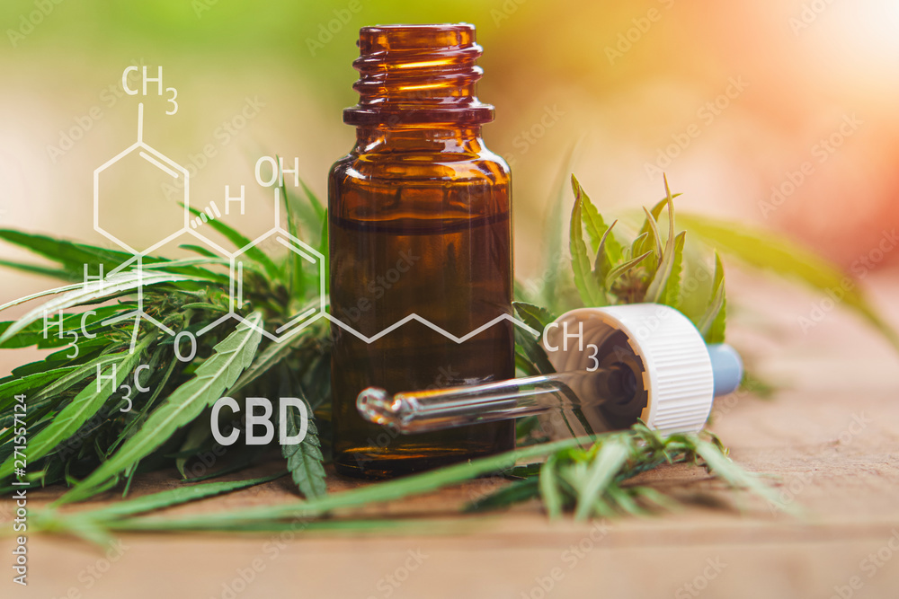 Fototapety, obrazy: Cannabis herb and leaves with oil extracts in jars. medical concept - formula CBD