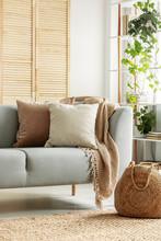 Beige Cushions On Gray Sofa In...
