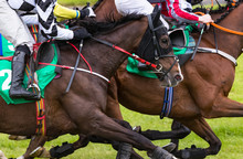 Close Up On Group Of Jockeys And Race Horses Racing On Track