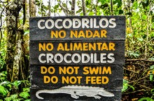 Crocodile Warning Sign, In Cos...