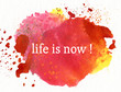 canvas print picture - life is now