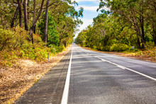 Country Road And Natural Bushland In Victoria Australia