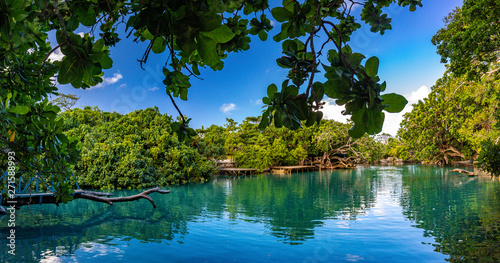 Canvas Prints Trees The Blue Lagoon, Port Vila, Efate, Vanuatu