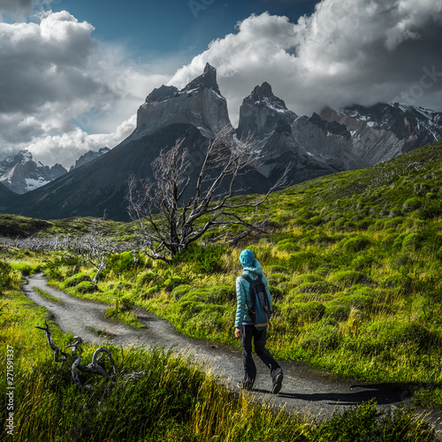 Woman hiker walks on the trail among the burnt trees with snow capped mountains on the background Fototapet