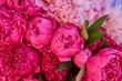 Leinwanddruck Bild - many large bright flowers peony background