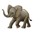 cartoon scene with little elephant on white background safari illustration for children