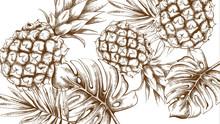 Pineapple Tropic Summer Patter...
