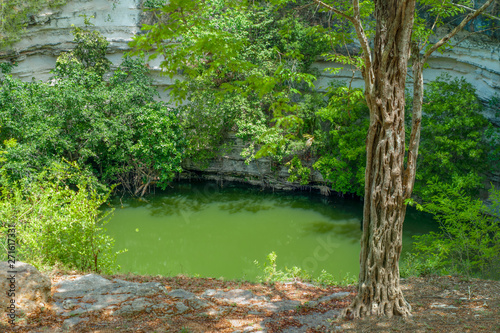 Fotomural  Sacred Cenote of the archaeological area of Chichen Itza, in the Yucatan peninsu