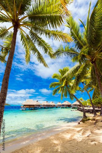 View of the sandy beach with palm trees, Bora Bora, French Polynesia Wallpaper Mural