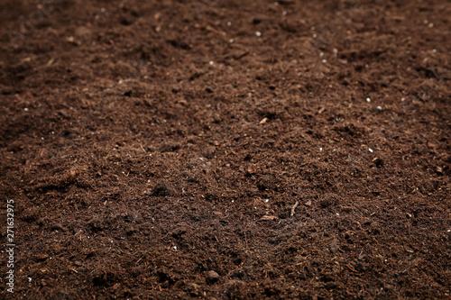 Textured fertile soil as background. Gardening season