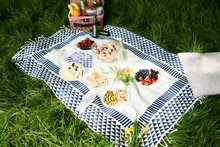 Healthy Picnic Snacks On A Blanket In Grass