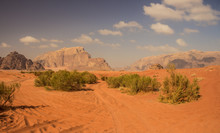 Desert Scenery Landscape Photo...