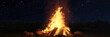 canvas print picture 3d rendering of large bonfire with sparks and particles in front of forest and starry sky