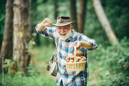 Vászonkép  Mushrooming in forest, Grandfather hunting mushrooms over summer forest background