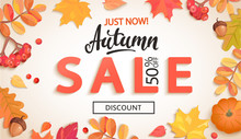 Autumn Sale, Just Now Banner With Discount In Frame Of Colorful Autumn Leaves, Rowan Berries, Acorns, Pumpkin For Fall Season Shopping Promotion,web. Template For Advertise. Vector Illustration.
