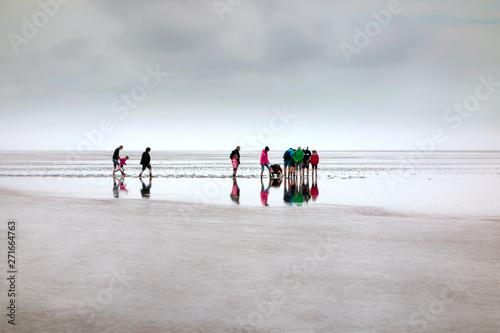 Canvas Prints North Sea Wanderung im Weltnaturerbe Wattenmeer an der Nordsee, Deutschland