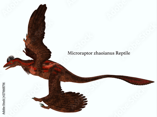 Carta da parati Microraptor Side Profile with Font - Microraptor was a carnivorous flying reptile that lived in China and Mongolia during the Cretaceous Period