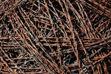 Barbed Wire, Mass Of Tangled Rusty Corroding Sharp Barbed Wire,Joseph H. Williams Tallgrass Prairie Preserve