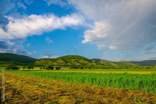 Spoed Foto op Canvas Blauwe hemel Landscape at the springtime