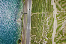 Aerial Of Vineyards By The Lak...