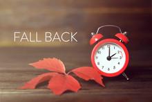 Fall Back. Daylight Saving Time.