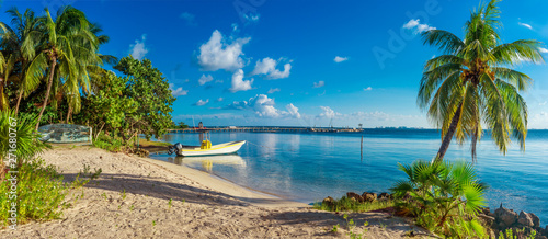 Fototapeta  Tropical beach in caribbean sea. Yucatan, Mexico.