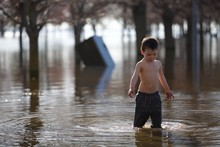 Young Toddler Plays In Water O...
