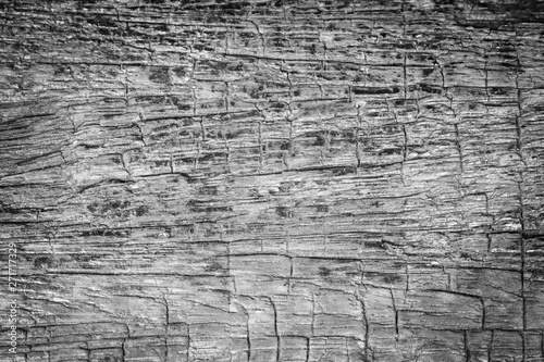 Aluminium Prints Firewood texture Pattern cracked old wooden background.