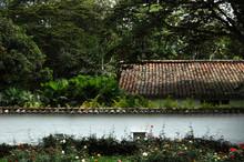 Techos Y Muros En Una Hacienda...