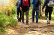 nature adventures - group of friends walking in forest with backpacks