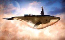 Surreal Flying Humpback Whale ...