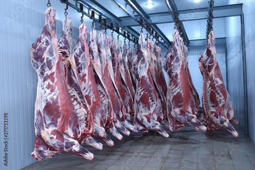 Cuadros en Lienzo market,animal,fresh,food,freezer,deep,raw,meat,beef,hanging,hooked,cold,storage,