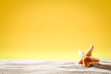 Summer Background Of Sand And Shell With Yellow Background