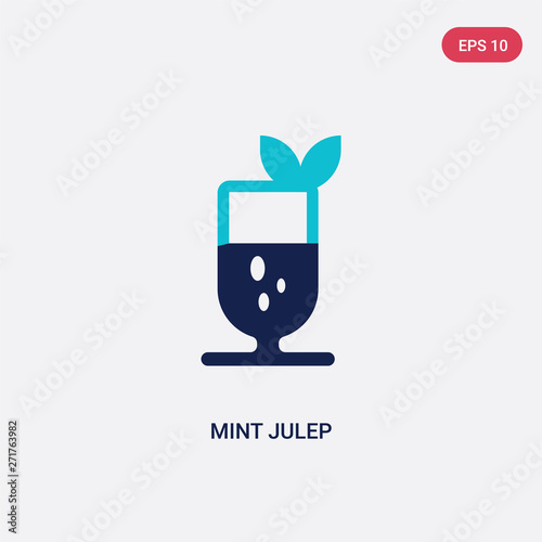 two color mint julep vector icon from drinks concept Canvas-taulu