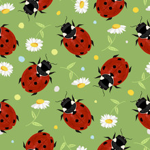 Summer Seamless Pattern With Ladybugs And Daisies