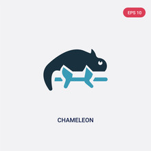 Two Color Chameleon Vector Ico...