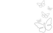 Summer Background With Butterfly Vector Illustration