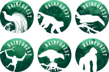 Set Of Vector Jungle Rainforest Emblems With Orangutan, Gorilla, Lesser Bird Of Paradise, Philippine Eagle, Channel-billed Toucan And Ape Monkey Capuchin