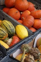 Halloween Pumpkin Of Stockholm...
