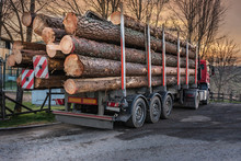 Transport Of Pine Wood From Valsain In Segovia (Spain)