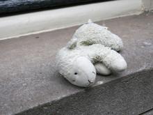 Lost Sheep, Cuddly Toy Or Stuf...