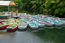 井の頭公園の池のボート