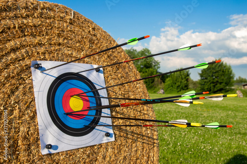 archery olympic sport arks and arrows in innovative materials Canvas Print
