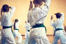 Kids Training On Karate-do. Ba...