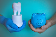Closeup Dentist Hand Holding Piggy Bank And Tooth. Dentist With Piggy Bank And Tooth Prosthesis.