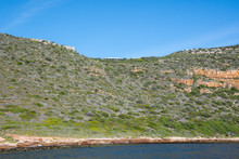 Cape Point Landscape