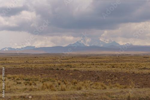 Poster de jardin Desert de sable dry landscape along the roadside in peru