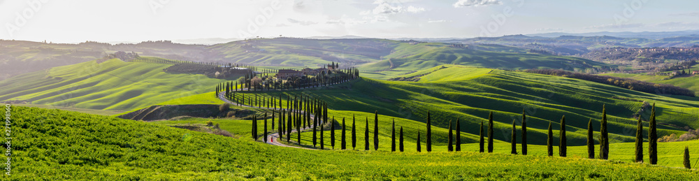 Fototapety, obrazy: green fields and hills in Tuscany