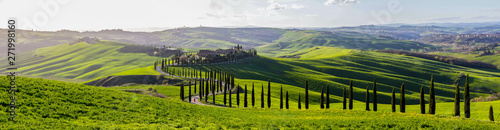 Poster de jardin Toscane green fields and hills in Tuscany