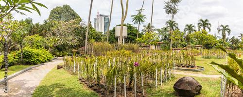 Fototapeten Natur KL-tower seen from the Botanical garden in Kuala Lumpur